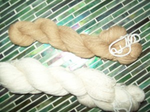 Finished skeins from first cotton crop
